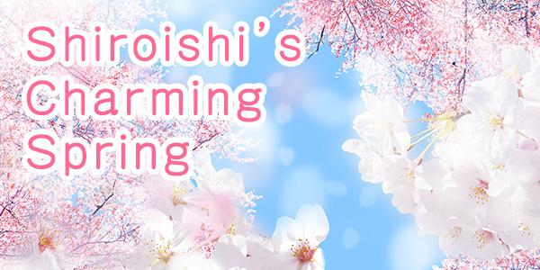 Shiroishi's Charming Spring