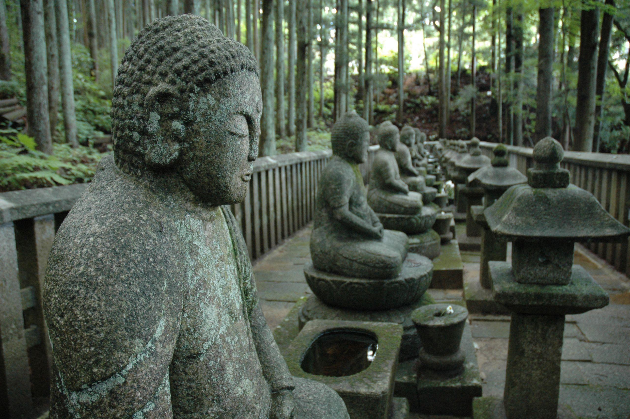 租腳踏車,來趟神社佛寺之旅「片倉御廟所」「傑山寺」